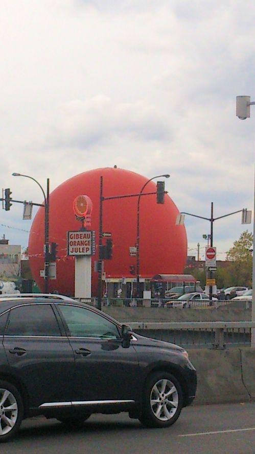 Orange Julip Exterior